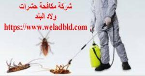 """""""مؤسسة مكافحة حشرات في عجمان"""